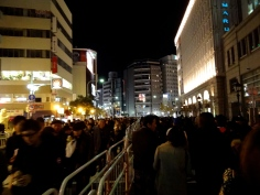 Kobe Luminarie 2013 - The Crowds