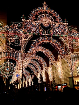 I went to Kobe's Luminarie Festival for the second time, and got really, really sick afterwards. (Pretty much knocked me out for the rest of the year).