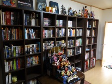We are so proud of those bookshelves....