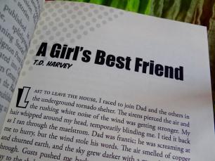 A Girl's Best Friend by T.D. Harvey