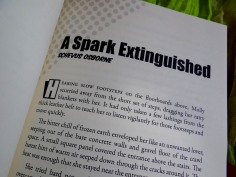 A Spark Extinguished by Schevus Osborne