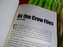 As the Crow Flies by Jada Ryker