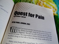 Quest for Pain by Anthony Hulse