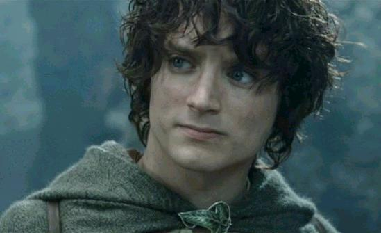 "Frodo, from The Lord of the Rings, works under The Hero archetype. Not the Chosen One, and one who often resisted his ""Call"", he fulfills the same role as Neo or Harry Potter, yet does so under unique motivations."