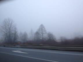 Vancouver Gray.