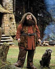Not Harry Potter's only caregiver, by far, but a character moved only by the needs of others (and especially animals), Hagrid is altruistic to a fault, adopting deadly animals and indulging the dangerous behavior of our three main protagonists. His nature ends up getting him in big trouble with the school when he underestimates Draco Malfoy's intentions, and he nearly loses all he has worked hard to achieve because of it.