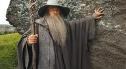 Gandalf the Grey (also listed in The Sage as Gandalf the White) is a Magician who turns into Sage after his fall from grace. He is the galvanizing force of power in the Lord of the Rings trilogy, providing Hope (the hobbits) protection on their quest to destroy the evil that Gandalf himself is afraid of being corrupted by.